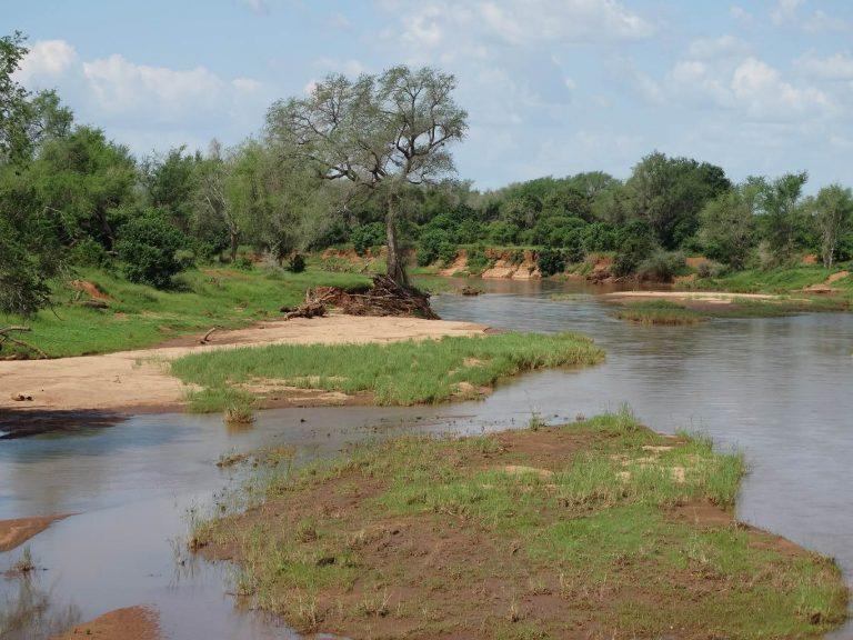 Rivier in het Krugerpark