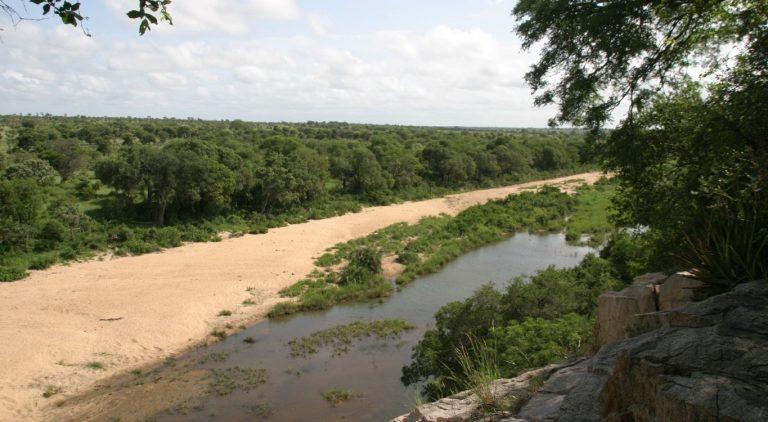 Krugerpark in Mpumalanga