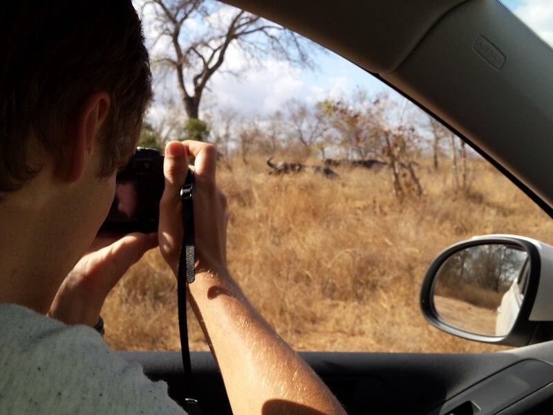 Self drive Safari in het Kurgerpark