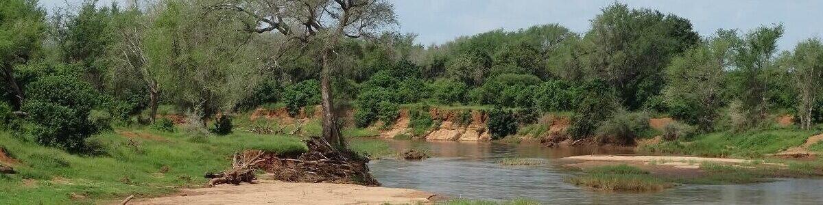 Rivier in Krugerpark
